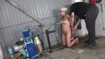 milking and handjob