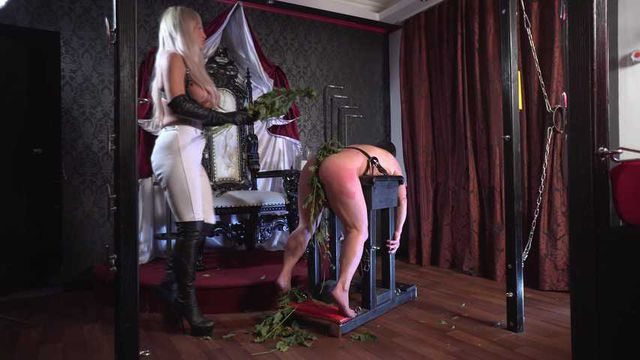 The Riding Instructor Part 1: Nettles and Whip