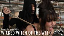 Wicked Witch of the Wet - w/TofuX