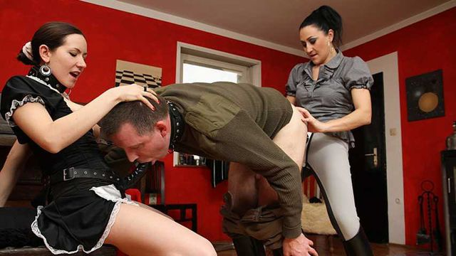 Riding Mistress -  Assfucked