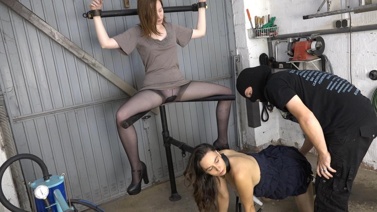 Milking in the pillory
