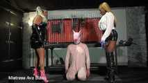 Basting the Hog