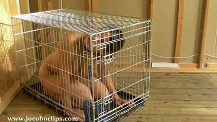 The Puppy Cage