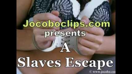 A Slaves Escape