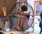 ab-149 Noras Torture - Part 2