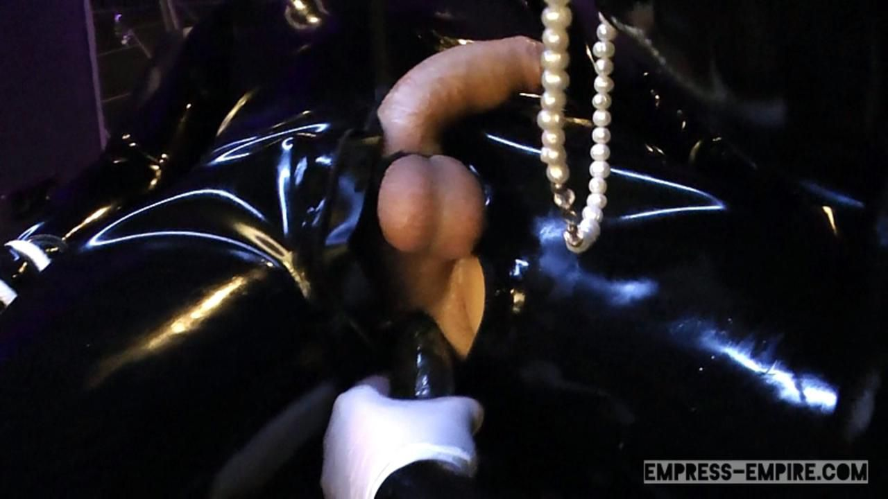 Lady Letizia - Locked up after Milking