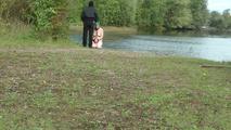 Iris - blow on the lake
