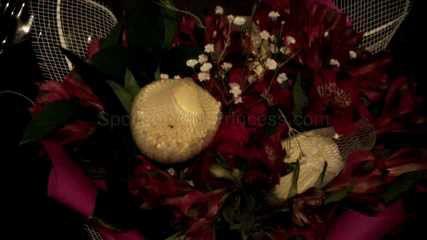 Foot Fetish Flowers