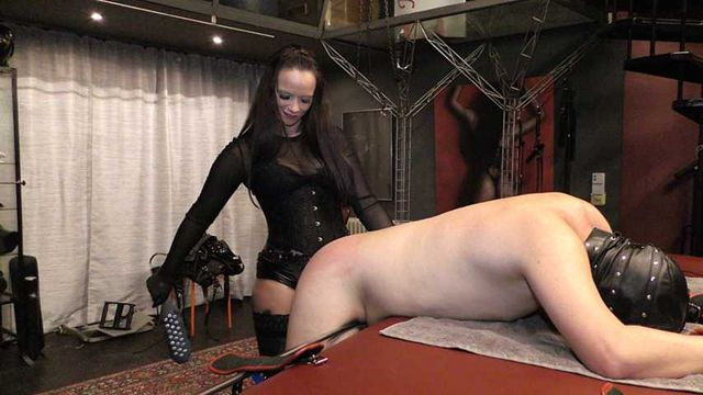 Comtesse la Moet  -  Spikes, Hard Banged