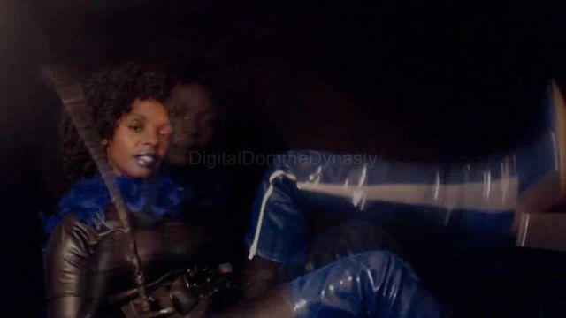 Latrix dominatrix in blue