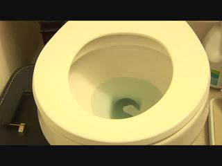 Toilet flushing chocolate cake logs