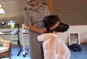 ab-126 Illegal Interrogation (2)