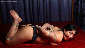 Mouse hogtied
