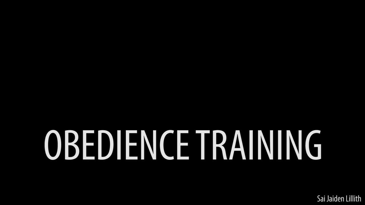 Obedience Training (Solo - BDSM Instruction)